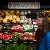 organic--7